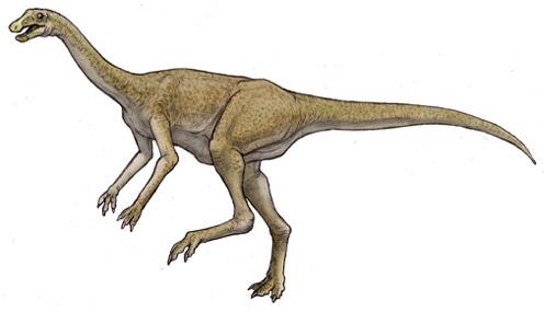 ガリミムス(Gallimimus ) 恐竜のデジタル図鑑