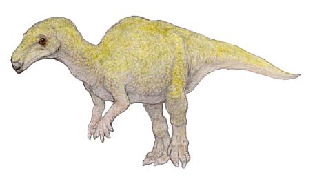 カンプトサウルス(Camptosaurus ) 恐竜のデジタル図鑑