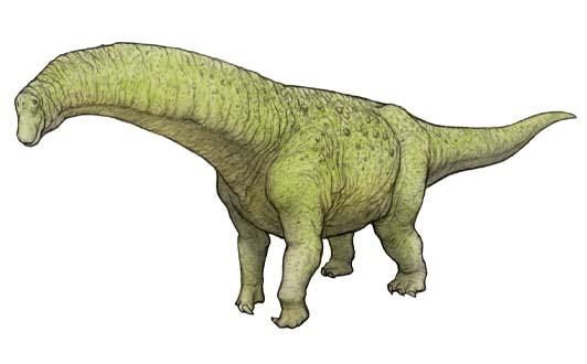 ティタノサウルス類