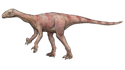 テコドントサウルス(thecodonto...