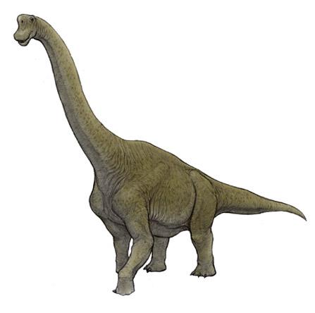 NAVER まとめかっこいい恐竜画像まとめ