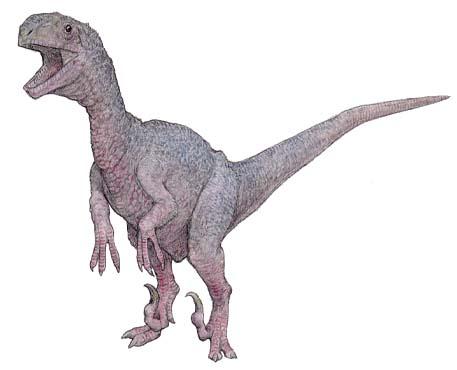 メガラプトル(Megaraptor ) 恐竜 ... : こども辞典 : すべての講義