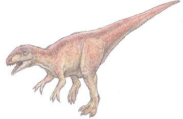 メガロサウルス(Megalosaurus ...